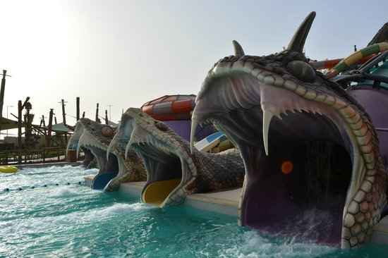 Yas Waterworld Abu Dhabi: Горки