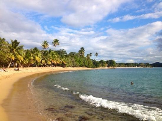 Tres Palmas Marine Reserve: Marina beach view...