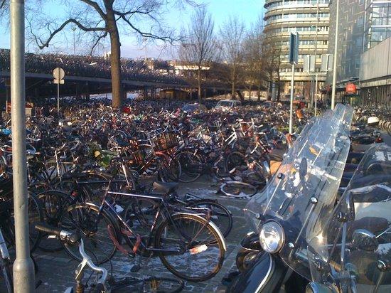 Ibis Amsterdam Centre: Delante del hotel Ibis