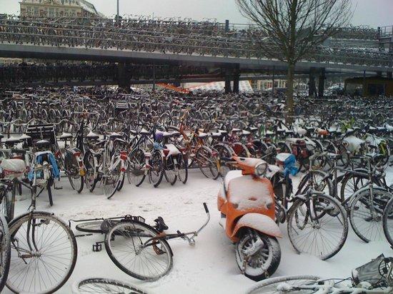 Ibis Amsterdam Centre: Parking bicis