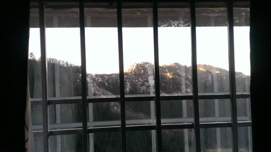Snow Flake Cottage: Morning view from window