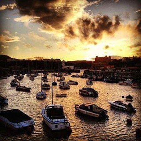 Rose Dene: Harbour