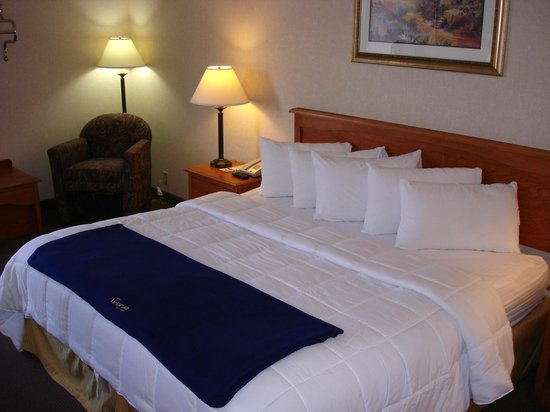 New Victorian Inn & Suites: King Bed