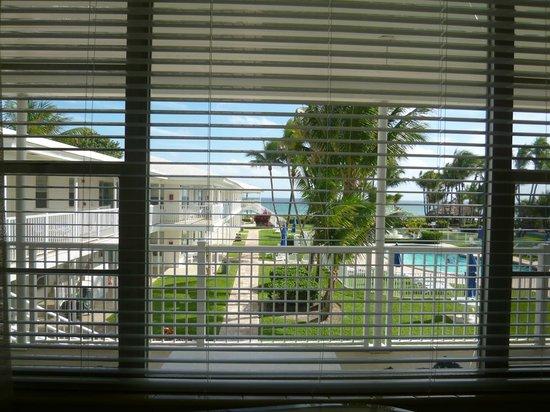 Wright by the Sea: Вид из окна гостинной