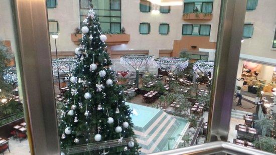 Hotel Novotel Moscow Sheremetyevo Airport: Внутренний дворик отеля