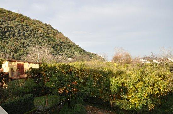 Villa Flavia: Вид на сад и горы
