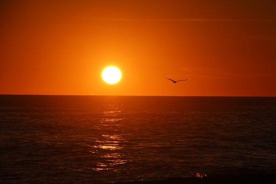 Gecko Rock Resort : sunset