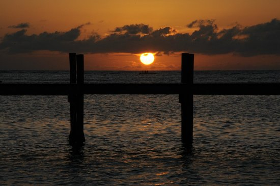 Tranquilseas Eco Lodge and Dive Center: Evening sunset