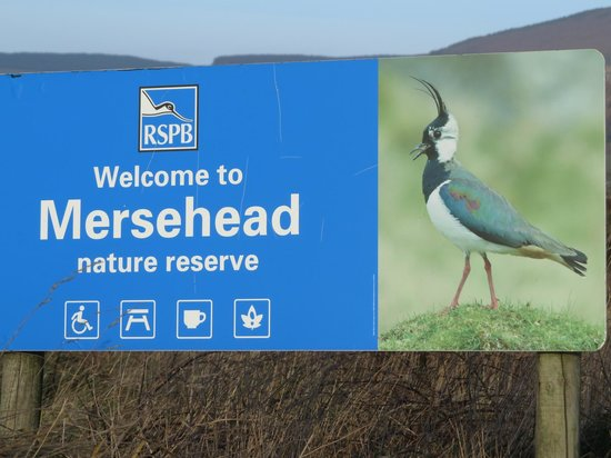 Mersehead Nature Reserve