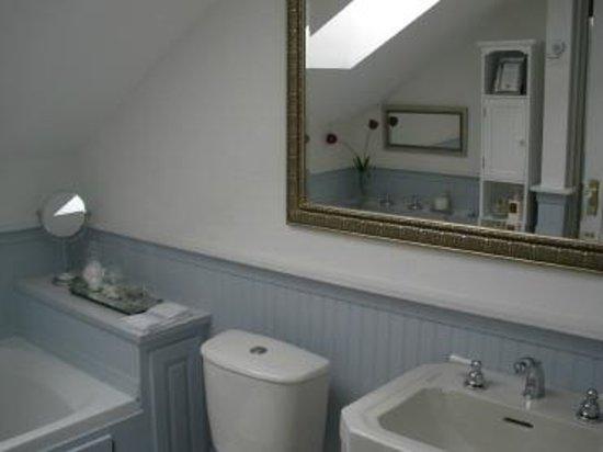 Timeless Rose Bed & Breakfast: Skylight in upper bathrom
