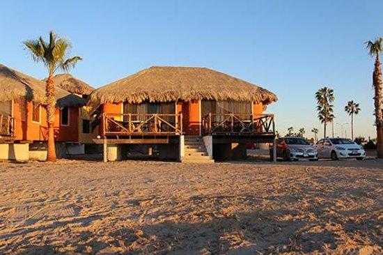 Hotel Villas Mar y Arena Ecotours : Delphin room