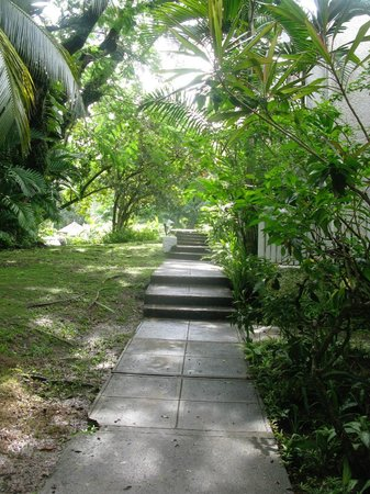 Goblin Hill Villas at San San: Walkway on the villa grounds
