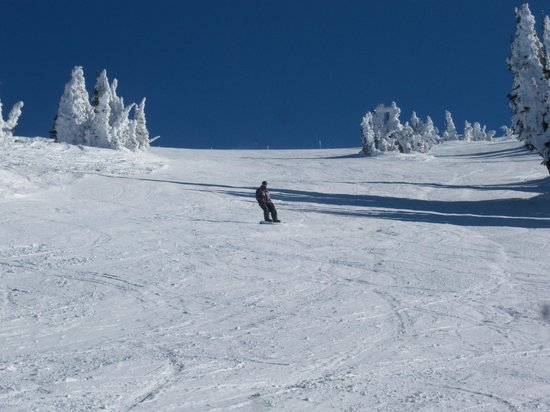 Grand Targhee Ski Resort: Bluebird day