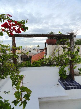 Casa Ginevra : view from the rooftop