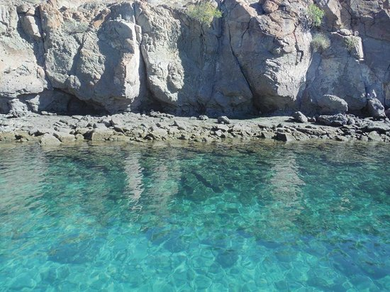 Villa del Palmar Beach Resort & Spa at The Islands of Loreto: Snorkeling