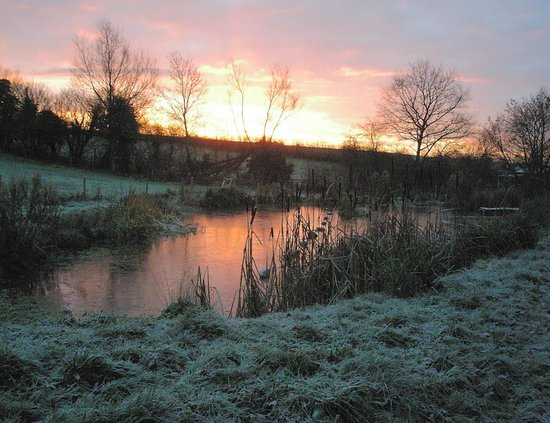 ‪‪Knowbury‬, UK: Winter dawn over the pond‬