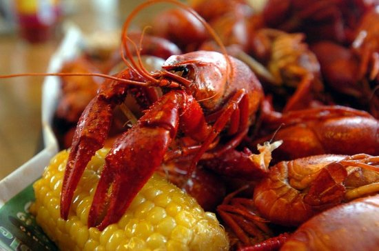 What Are The Best Seafood Restaurants In Mobile Alabama