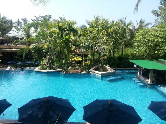 Novotel Phuket Kata Avista Resort and Spa : pool view from the room