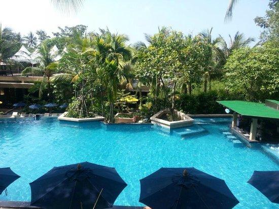 Novotel Phuket Kata Avista Resort and Spa: pool view from the room