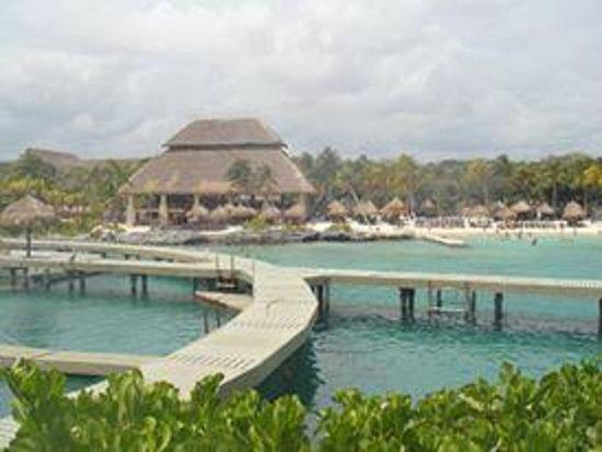 Xcaret Eco Theme Park: Golfinhoss!!!