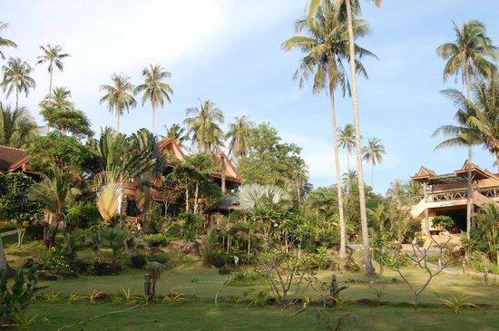 Suanya Kohkood Resort & Spa: hotel
