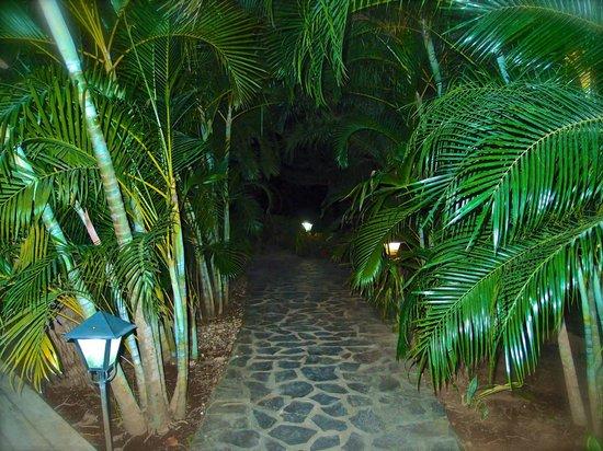 El Sabanero Eco Lodge: night time walk to our room