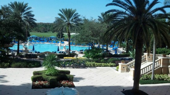 The Ritz-Carlton Orlando, Grande Lakes : Sparkling Pool