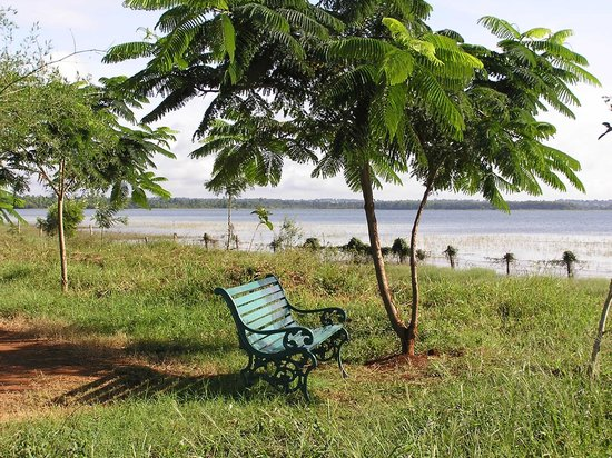 Red Earth, Kabini : Lake front where we had tea in the evenings