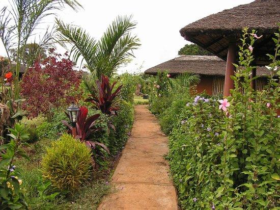 Red Earth, Kabini : Path around facility