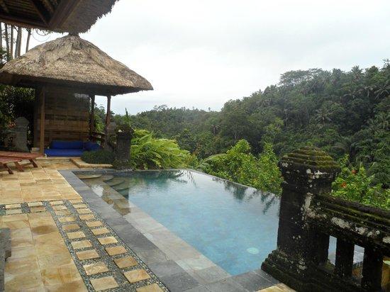 Puri Wulandari Boutique Resort: spacious pool and bale