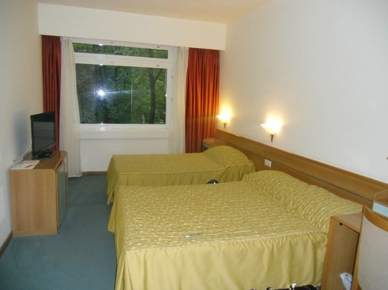 Plitvice Hotel: Large but dated room