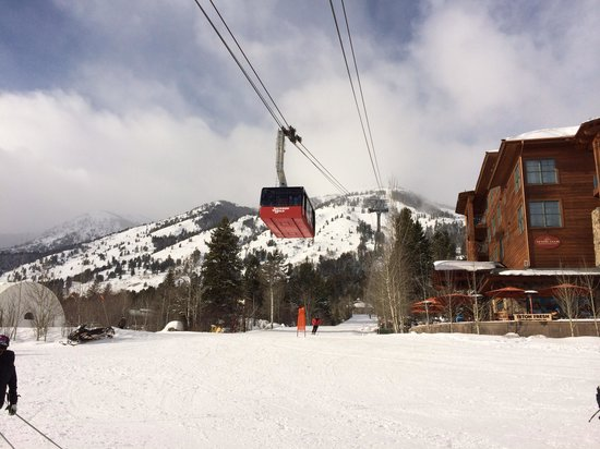 Jackson Hole Mountain Resort: Tram