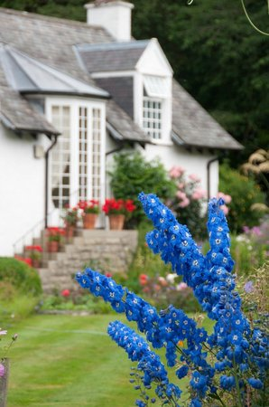 Cosses Country House : The garden and house