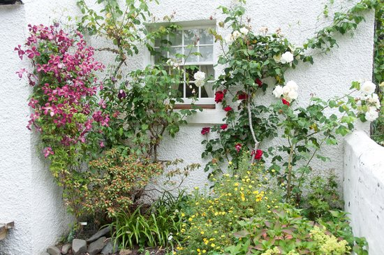 Cosses Country House: Roses and Clematis at the bottom of the garden