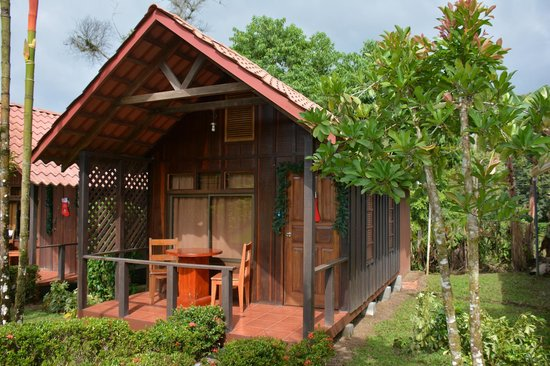 Arenal Green Hotel : View of the cottage where I stayed