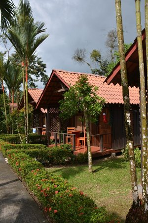 Arenal Green Hotel : Grounds of the hotel and the cottages