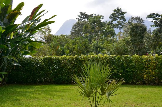 Arenal Green Hotel: Looking towards Mount Arenal from my room