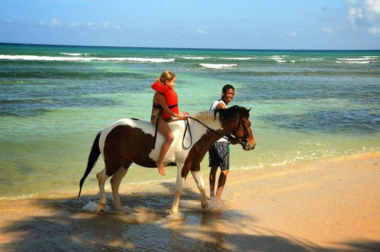 Half Moon : Camp horse-back ride  - Sunrise Beach