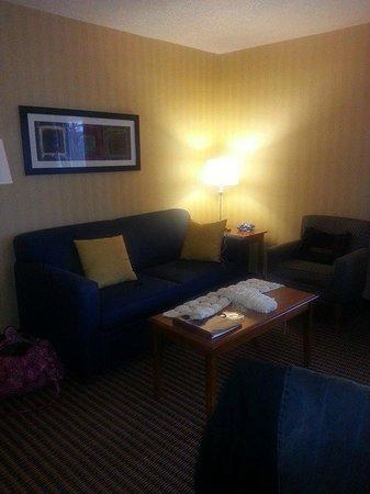 Comfort Inn & Suites Alexandria : Living room