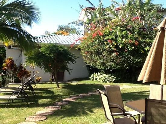 Hotel Buena Vista : jardin