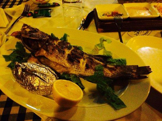 The Last Refuge: Grilled grouper