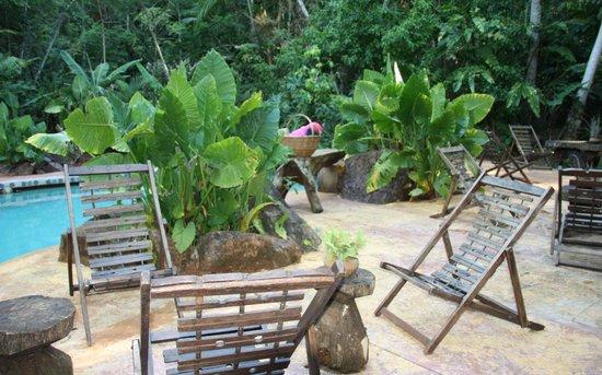 Yacutinga Lodge: the pool excellent