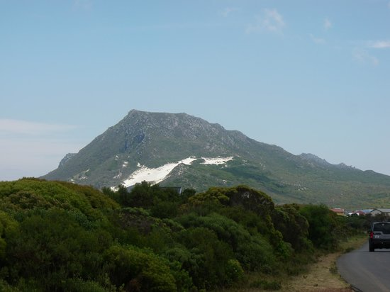 Blue Horizon Guest House: View of a sand patch on the Mountain near Gordon's Bay