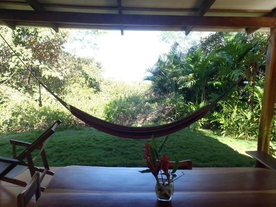Agua Vista: View