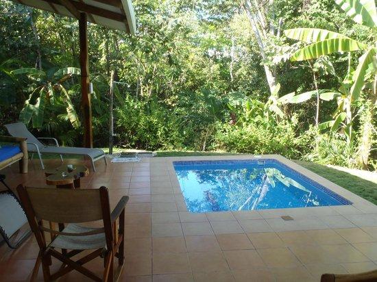 Agua Vista: Plunge Pool