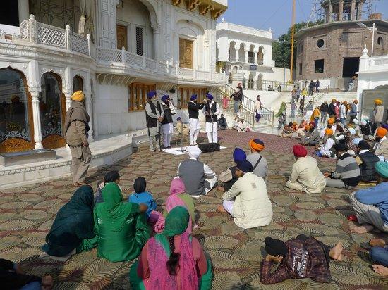 Templo Dorado: Amritsar Goldener Tempel 1