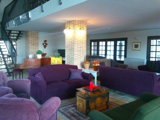 Hotel Balneario de Zújar- La Alcanacia: Salón y biblioteca
