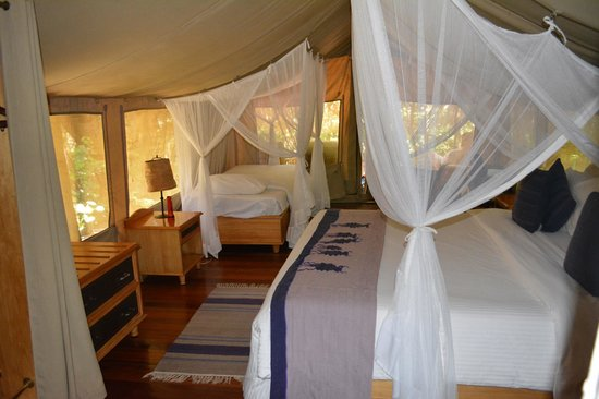 Sarova Mara Game Camp : another view