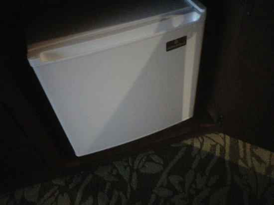 Hilton Hawaiian Village Waikiki Beach Resort: small fridge