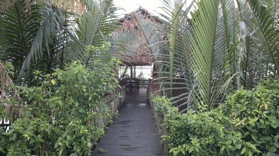 Hoi An Ancient House Resort & Spa: Couloir vers la terrasse pour déj